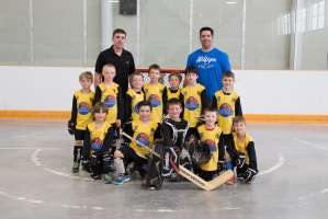Tyke - Barrie Bruins